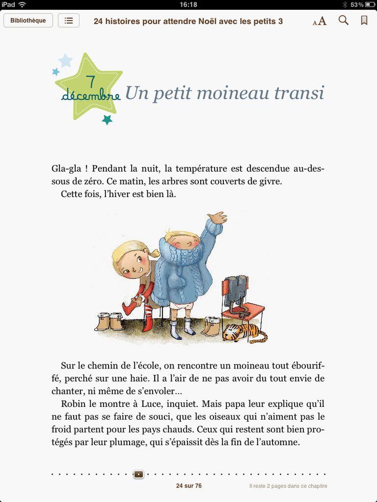 """ebook created by Audrey Keszek """"24 Histoires pour attendre Noël avec les petits"""" - Sylvie de Mathuisieulx - Fleurus éditions #epub #livrenumérique #ebook"""