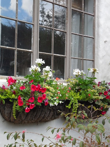 This is simple but pretty Petunias, Geraniums, varied vines and it looks like  Dianthus.Moveable Windows, Gardens Ideas, Pretty Petunias, Balconies Gardens, Windows Boxes, Janelas Florida, Windows Gardens, Gardens Landscapes, Bloom Windows