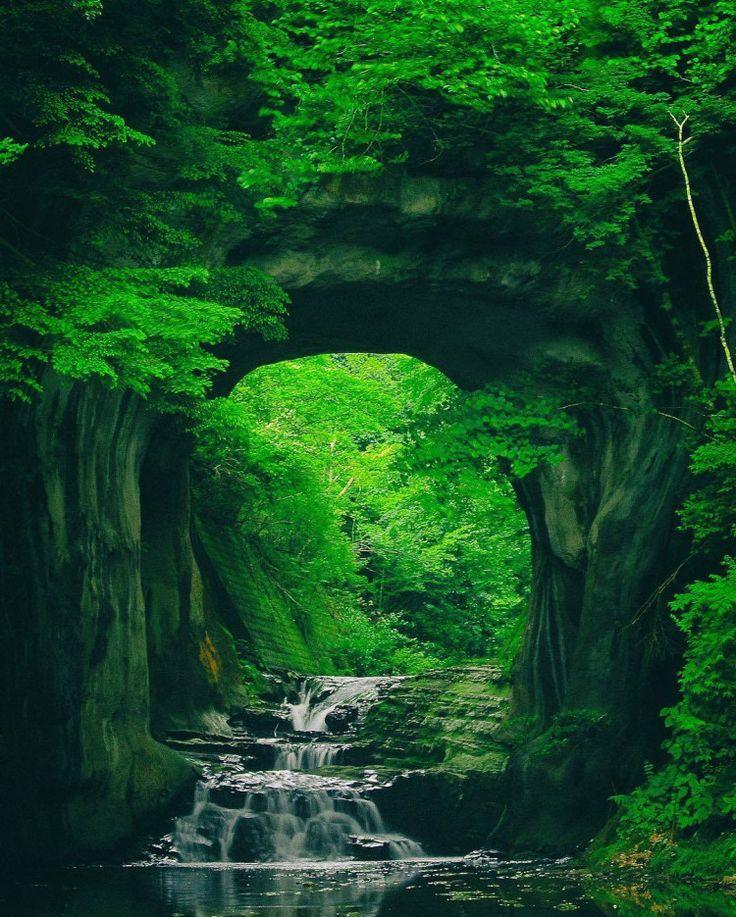 千葉県にある「濃溝の滝」は、神秘的で美しいパワースポットとして有名になりました。その風景は思わず息をのむ、一度は訪れてみたいほどの絶景なんです。訪れるなら、まさに今の季節がぴったり。今回はその魅力をご紹介します。                                                                                                                                                                                 もっと見る