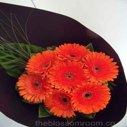 A Big Painted Like Daisy Flower-The Gerbera. More info @ http://live-well-now.com