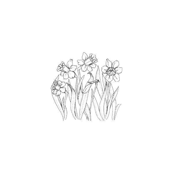 Art Impressions Floral Style Stamps ❤ liked on Polyvore featuring fillers, doodles, drawings, backgrounds, sketches, text, effects, magazine, outline and quotes