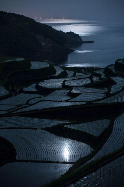 Terraced rice fields in Saga, Japan