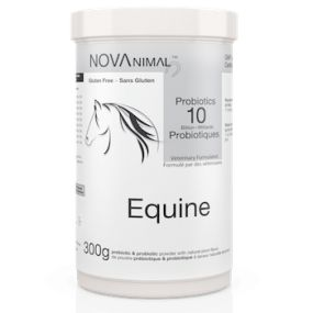 """Good nutrition is only healthful if your horse's digestive system is working properly"" - Dr. Eleanor Kellon, VMD. Try NOVAnimal Probiotics to maximize your horse's digestive efficiency. Available ONLINE at novaprobiotics.com"