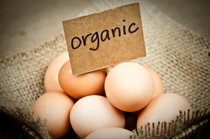 Will Switching to Organic Meat, Dairy and Eggs Save Your Health