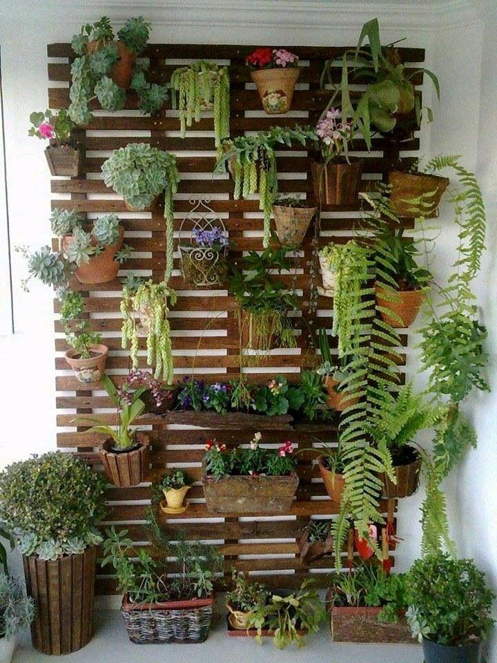 imagenes con ideas para jardines verticales caseros