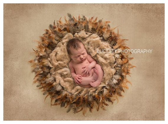 Digital Background – Digital Backdrop – Digital Prop – Photography Prop – Newborn Nest Prop – Wreath Photo Prop – Double Feathered Nest