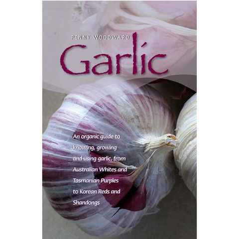 Garlic – Earth Garden