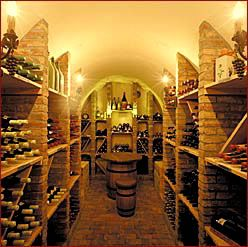 Everyone needs a wine cellar in their home right?!