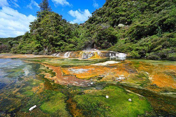 Waimangu Volcanic Rift Valley Photo - Waimangu Volcanic Rift Valley hydrothermal system