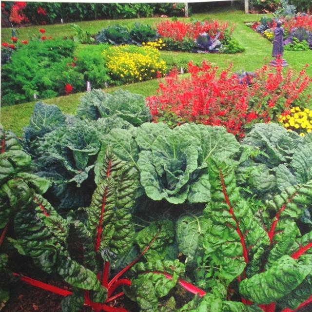 65 Best Potager Gardens Images On Pinterest: 60 Best GARDENING: EDIBLE LANDSCAPING Images On Pinterest