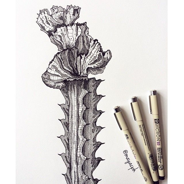 The Second Cactus All Done #orchidcactus #cactus #illustration #drawing #sketch #sketchbook # ...