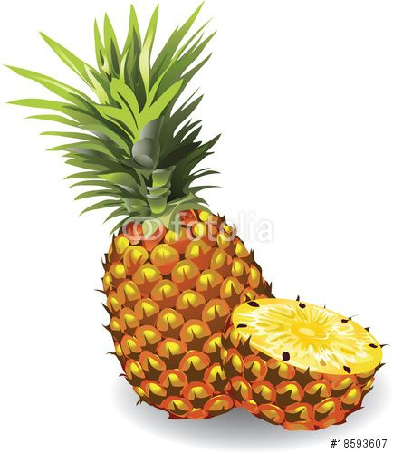 Vector pineapple. PineappleTentVectorsFruitPaintingKitchen  sc 1 st  Pinterest & New Tent Fruit Chosen: a collection of ideas to try about Other ...