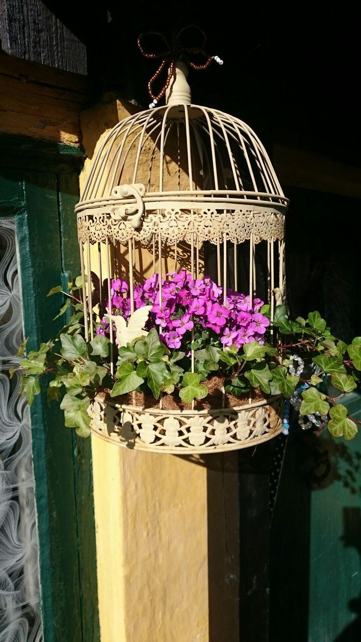 Elsker fuglebure