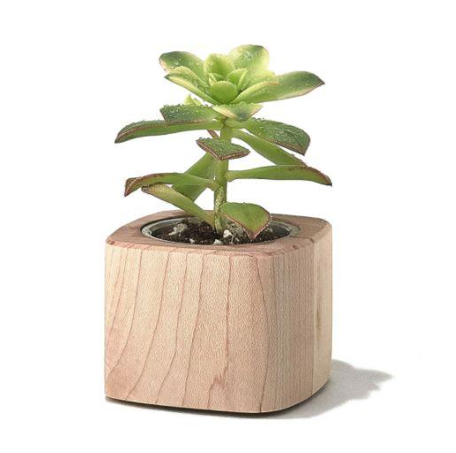 Best 25 bureau plus ideas on pinterest coin d 39 tudes bureau de coin and petit bureau for Petit plante pour bureau montpellier