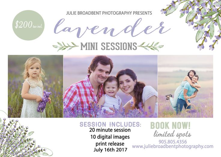 LAVENDER FARM MINI SESSIONS! » Julie Broadbent Photography