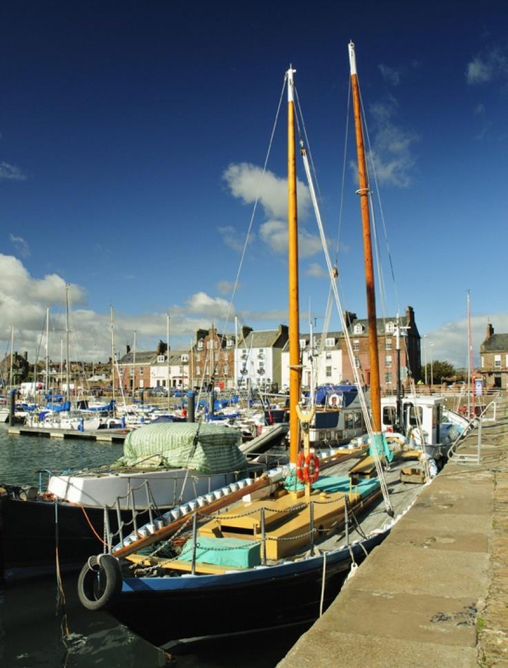 'Arbroath Harbour' -    Louise Kerr |  Sunshine on the harbour