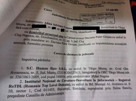 Alina Ceuşan vs. Mihai Negrea. Primul caz public pentru recuperarea numelui unui domeniu .ro http://cemerita.ro/alina-ceusan-vs-mihai-negrea/