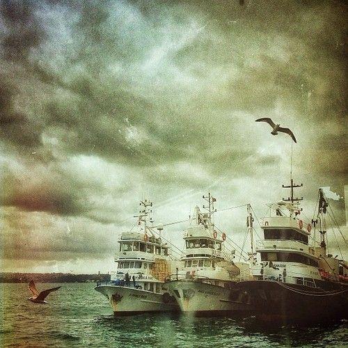 Yorgun balıkçı tekneleri..  (Sarıyer'da)