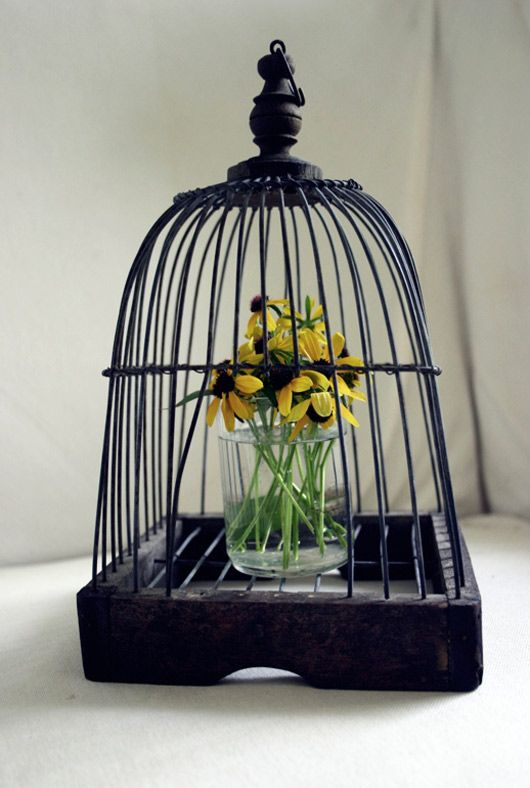 66 Best Birdcages Upcycle Reuse Recycle Repurpose Diy