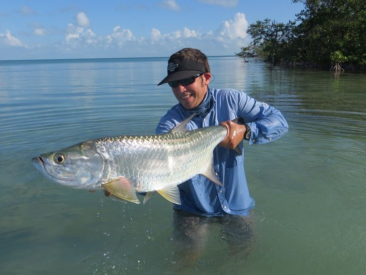114 best tarpon images on pinterest fishing fly tying for Facts about fishing