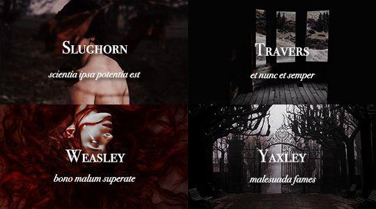 Sacred Twenty-Eight pureblood families: Slughorn, Travers, Weasley, Yaxley