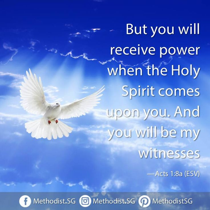 Have a blessed pentecost sunday