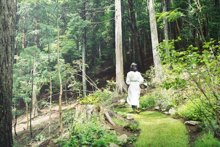 自然のなかで美容と健康を獲得する 星のや富士 の滞在プログラム 夏の森グランピングリトリート スタート 夏 森 自然