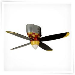 Airplane ceiling fan