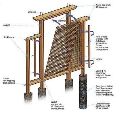 A garden trellis you can build in a weekend to add garden interest and a sturdy host for flowering climbers.  | Illustration: Gregory Nemec | thisoldhouse.com
