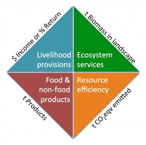 On Landscapes - Part 3: Defining objectives and measuring progress. by Peter Holmgren, CIFOR