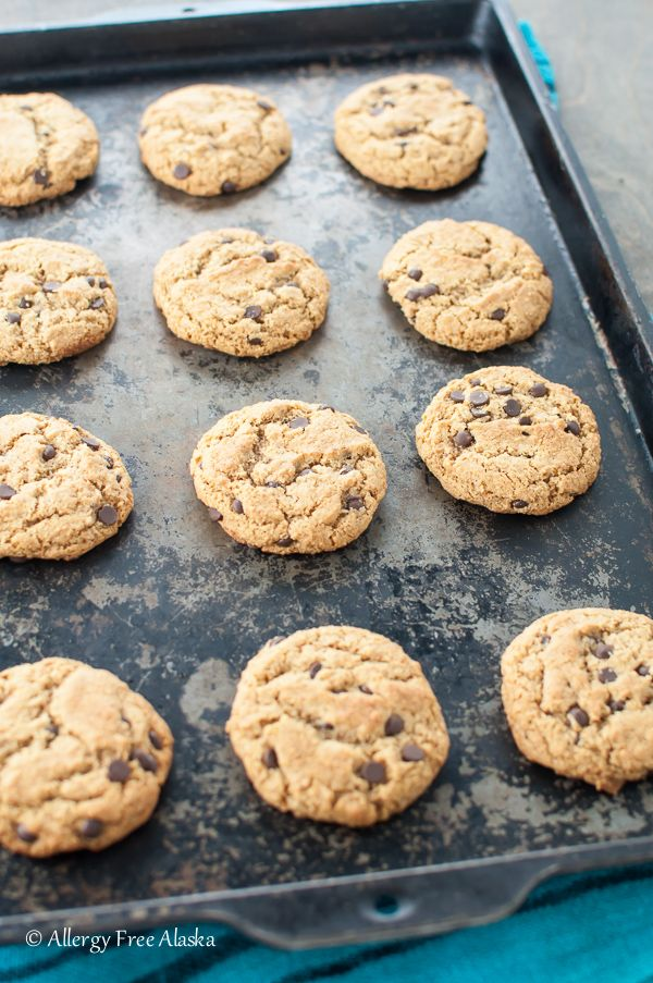 These are my FAVORITE cookies!! Ultimate Paleo Chocolate Chip Cookies Recipe from Allergy Free Alaska