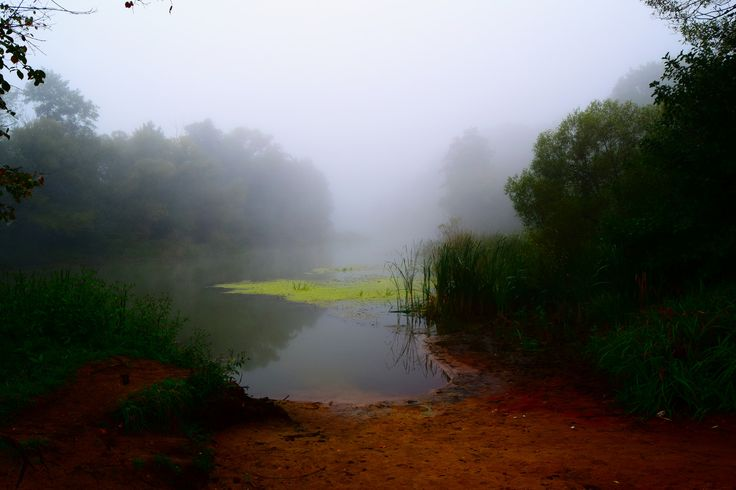 https://flic.kr/p/UMEz8N | Fog ... and the sandy bank of the river.