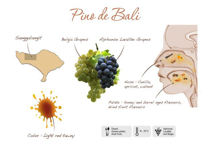 Pino de Bali, visual presentation