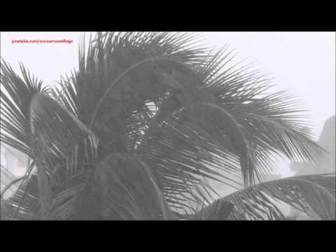 10 hour video of very heavy Rain Wind Thunder - rain storm / thunderstorm…