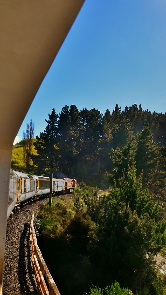 Summer in New Zealand aboard the Coastal Pacific Train