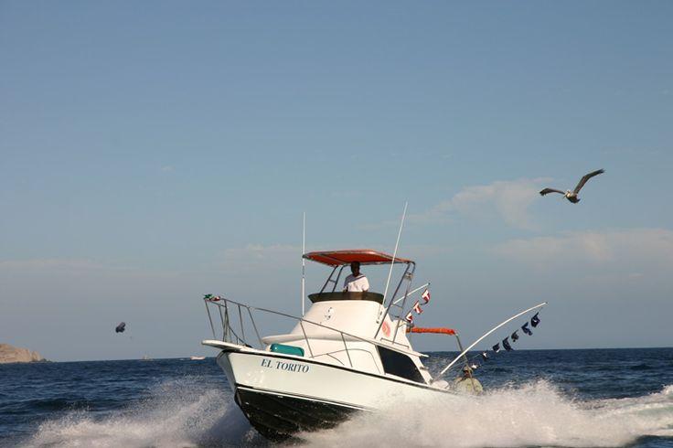 Bassa California del Sur, Cabo San Luca: rientro dalla pesca al merlin.