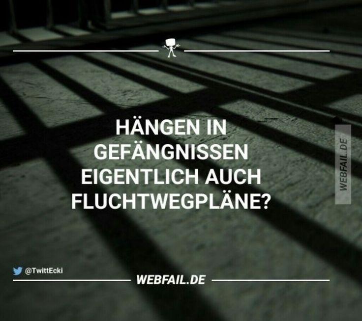 Bilder, die euch zum Lachen bringen 2.0 » Forum - kleiderkreisel.de