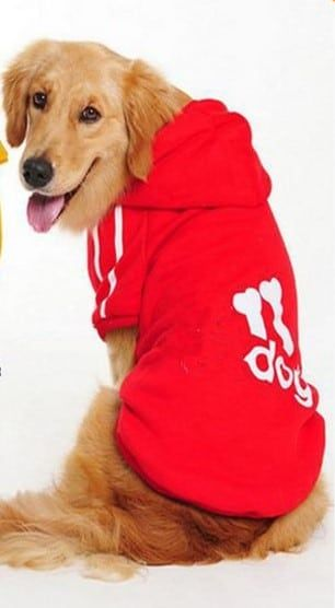 como-hacer-ropa-para-perros-grandes