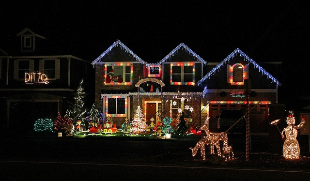 Ditto Christmas Lights | Christmas | Pinterest