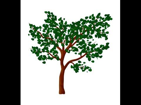 Tree with leaves - Adobe Illustrator tutorial. How to draw vector tree w...