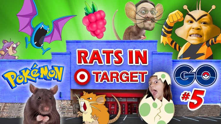RATS IN TARGET STORES! POKEMON GO Part 5 (FGTEEV GYM Win, EGG HATCHING & EVOLVE Gameplay) Fandom Fare – PoleMon GO Duddy, Chase & Lex are catching, evolving and cracking open eggs …