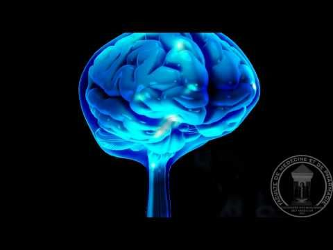 ▶ Anatomy of the brain: The Cerebrospinal Fluid CSF - YouTube Awesome  visual of the ventricles