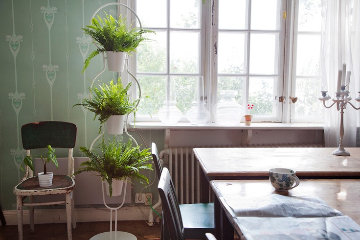 apparently Ikea make lovely plant stands