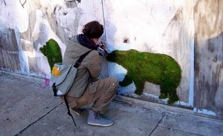 De la peinture faite maison appliquée sur un mur donne naissance à un véritable graffiti végétal en mousse naturelle... magique !