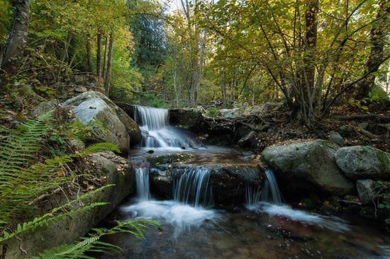 Natural Park: Montseny (Vallès Oriental, Catalunya)