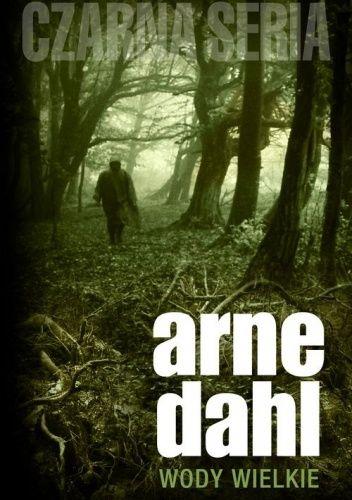 Arne Dahl: Wody wielkie - http://lubimyczytac.pl/ksiazka/169157/wody-wielkie