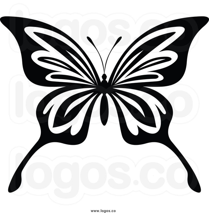 69 best images about Butterfly tattoo on Pinterest | Moth ...