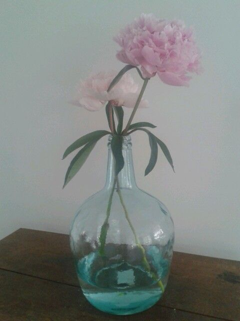 Bolvaas met pioen roos