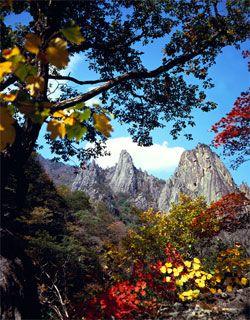 #Seoraksan National Park, #Gangwon Province, Korea