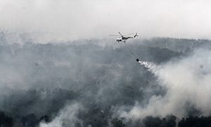 Indonesia is burning. So why is the world looking away?